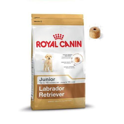 Labrador Retriever Junior - 3 Kg