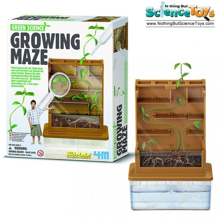 Green Science Grow – a – Maze  – Science Toy