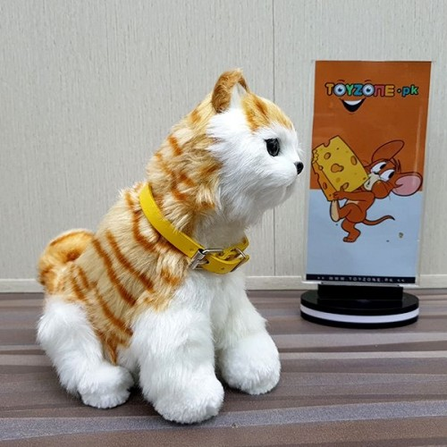 Punched Face Persian Cat (Orange and White)