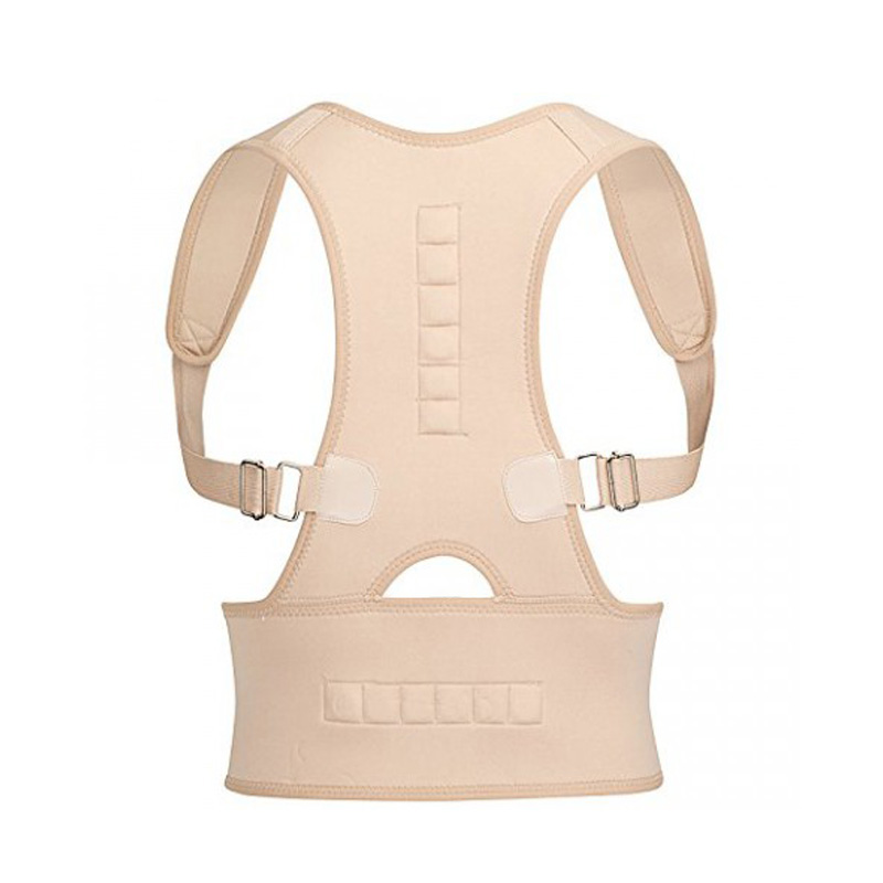 Royal Posture Back  Support Belt for Pain Relief
