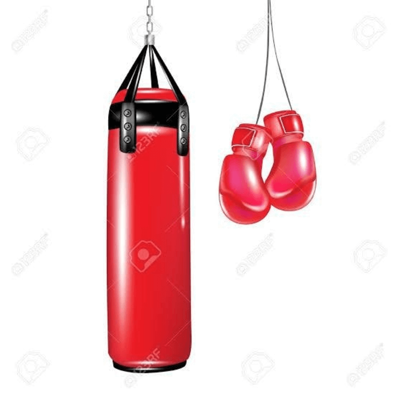 boxing-punching-bag-with-boxing-gloves