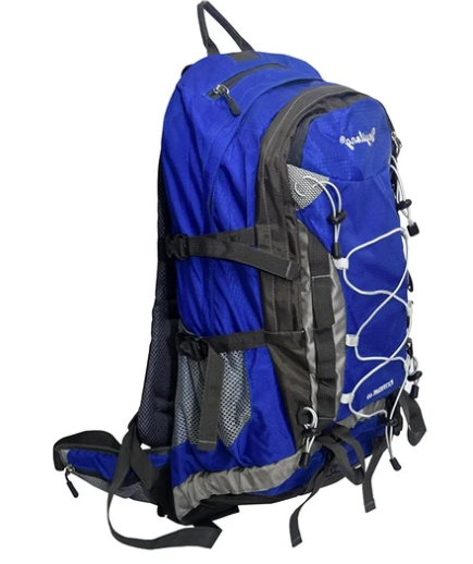 pro-sport-travel-leisure-back-pack-with-rain-cover-blue
