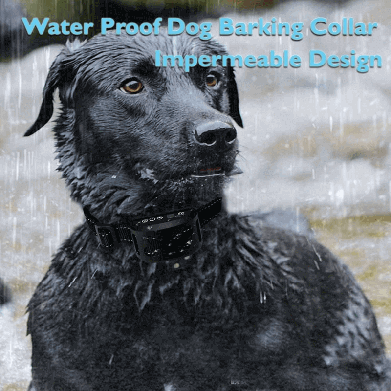 Dog Training Collars With Beep Rechargeable
