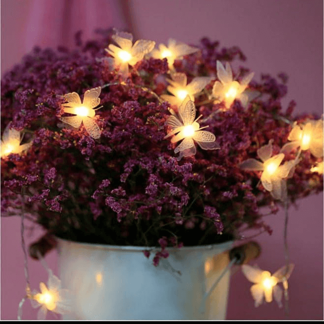 10-led-butterfly-fairy-lights