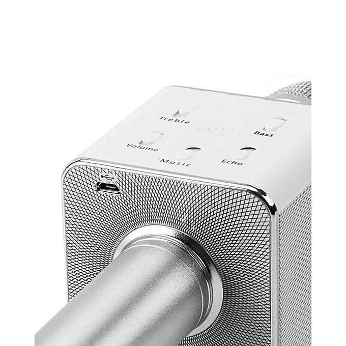 Speech Mic With Loud Speaker (Built-In) & Echo Option